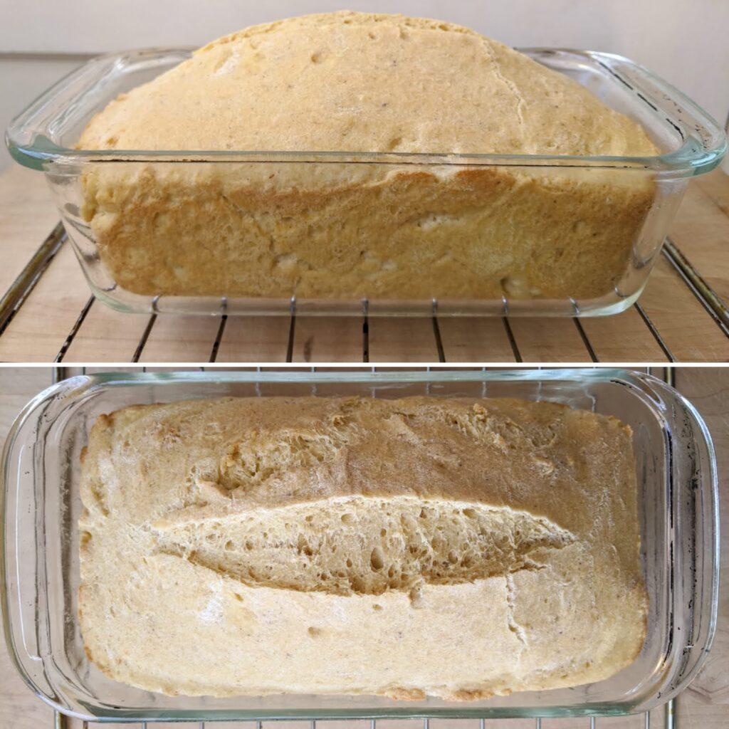 Deep-S Dinner Rolls bread